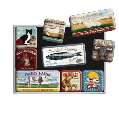 Animal Club, Animal Club, Magnet Set (9pcs), 9x2x7 cm/A413