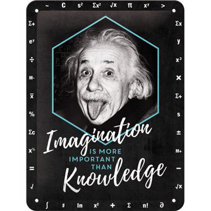 Einstein - Imagination & Knowledge Tin Sign 15 x 20, Celebrities