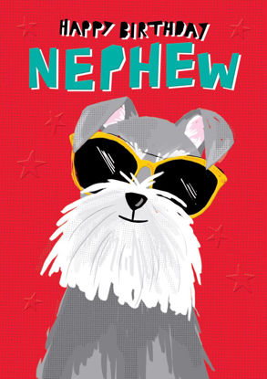 POP - Nephew Birthday/Dog on Red, Doppelkarte mit Couvert, 108x153mm
