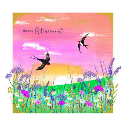 Gallery - Retirement/Swallows